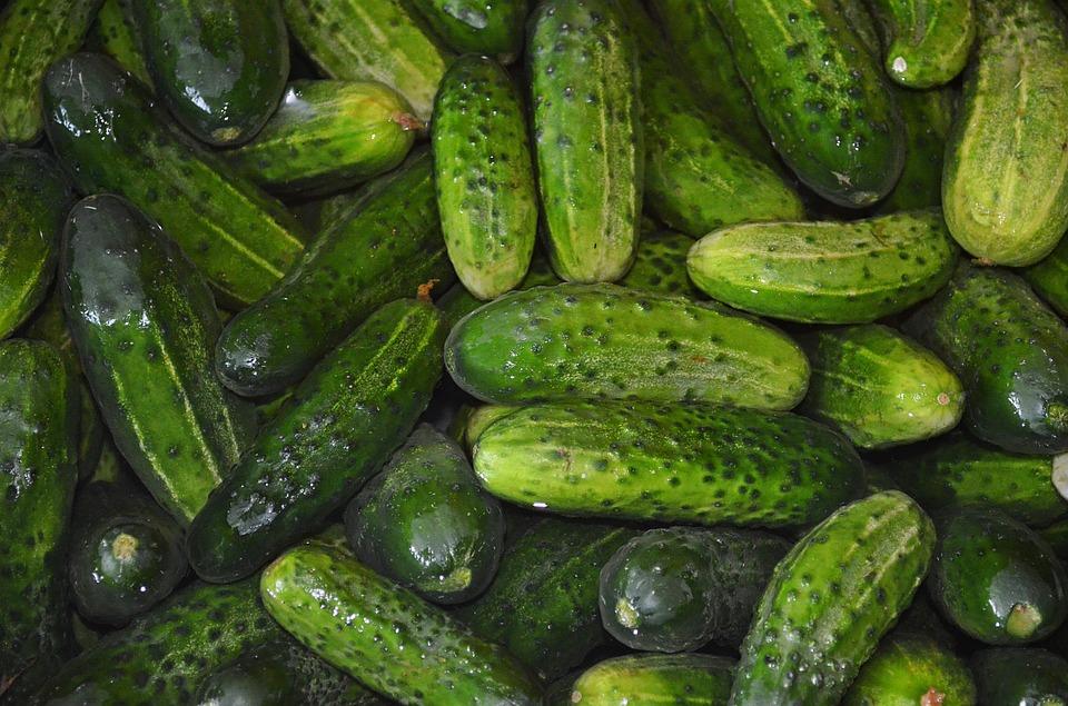 cucumbers-863808_960_720